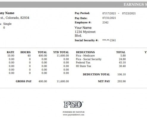 Detailed Paystub Style